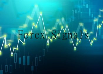 how to identify and avoid forex signal scams