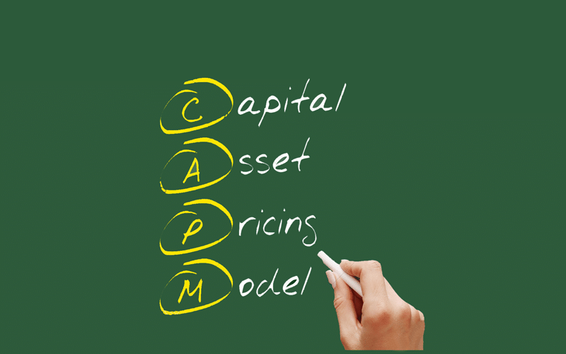 Decoding the Capital Asset Pricing Model (CAPM)