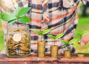 Best ESG Funds to Invest In