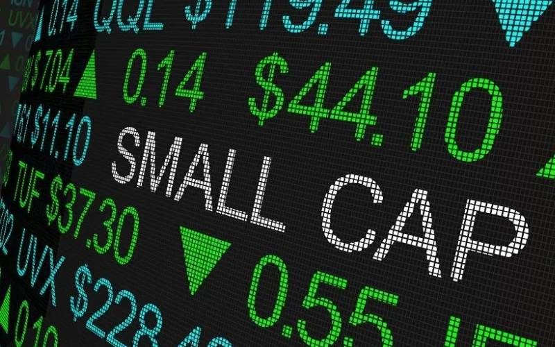 The Year of the Small Caps Market