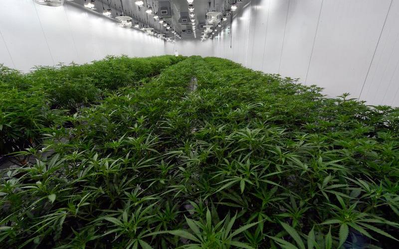 New York A Step Closer To Legalizing Recreational Marijuana