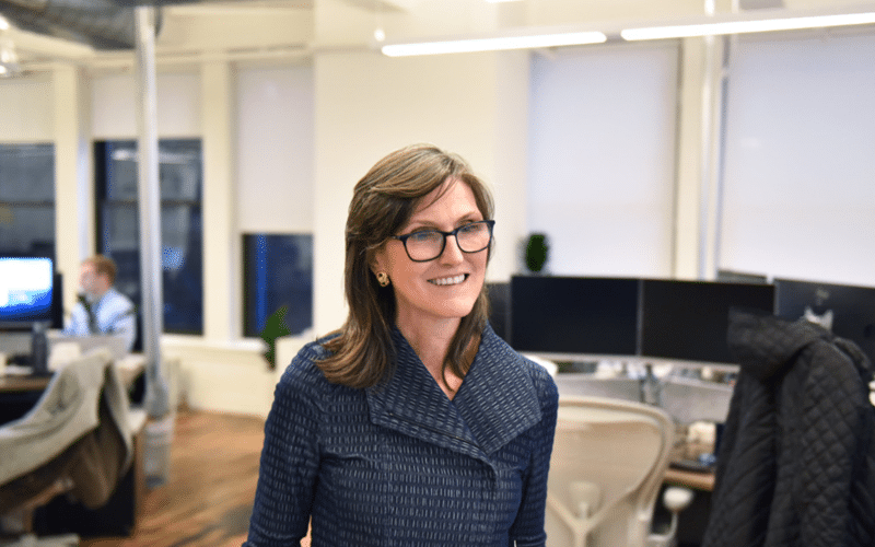 Cathie Wood's ARK Invest Buys Over 5.6 million of Palantir Technologies Stocks